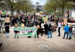 Der Dritte Weg in Viechtach - dahiner der große Gegenprotest